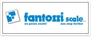 fantozzi_scale